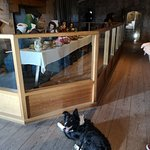 Dog Friendly inside the castle also - only place they're not allowed in is the cafe and gift sho