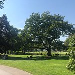 城市公园照片
