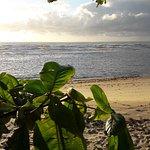 Photo of Praia dos Nativos