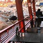 Foto de Aqui Jaime Restaurante