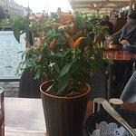 Foto di Restaurant Galionen