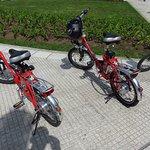 Foto de Bike n' Wander Experiences