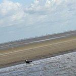 Foto de Cuxhaven-Rundfahrt