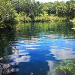 Photo of Cenote Crystal