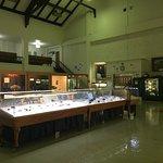 Zdjęcie MBMG Mineral Museum