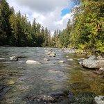 Bilde fra Stamp River Provincial Park