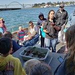 Bilde fra Marine Discovery Tours