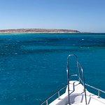 Photo of Ilios Dive Club