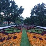 Photo of Vermanes Garden