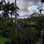 Garden of the Sleeping Giant의 사진