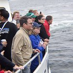 Hyannis Whale Watcher Cruises Foto