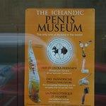 Icelandic Phallological Museum의 사진