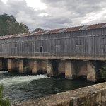 Foto de Savannah Rapids Visitor Center