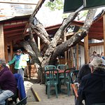 Photo de Tree-House Cafe