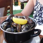 moules infectes