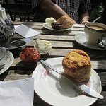savoury and cream tea