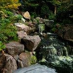 Foto Kyoto Garden