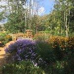 Poole Park fényképe