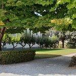 Weingut Avignonesi Foto