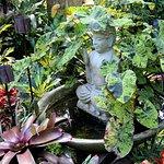 Sculptures , ponds and pots