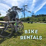 Bike Rentals! Road Bikes, City Bikes, Hybrids and more.