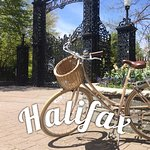 Experience Halifax by bike!