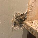 Room 157 - Shower area - Black Mold