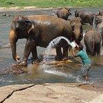 ภาพถ่ายของ Sri Lanka Exclusive (SLE Tours)