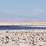 Photo of Salar de Atacama