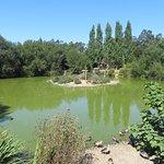 ภาพถ่ายของ Zoo Santo Inácio