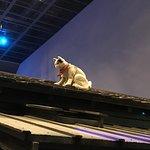 Ảnh về Fukagawa Edo Museum