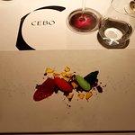 Photo of Cebo