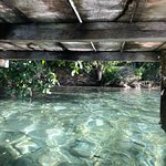 Foto di Lake Bacalar