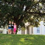 Billede af Alabama State Capitol
