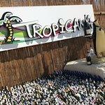 Φωτογραφία: Tropicana Club