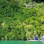 日月潭鱼人立桨 Sup体验教学照片