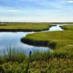 From Sea to Shining Sea.  The Great Sippewisset Creek Marsh.