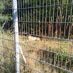 Φωτογραφία: Naturwildpark Granat