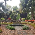 Valokuva: Nong Nooch Tropical Botanical Garden