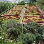 Madeira Botanical Garden Foto