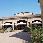 Photo of Agriturismo Acetaia Paltrinieri