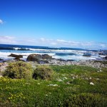 Photo of Robben Island