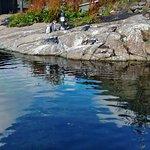 Photo de Atlantic Sea Park