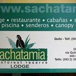 Sachatamia Lodge Picture