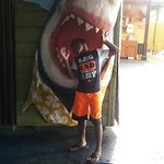 The kids can't resist putting their heads into the mouth of the resident shark.