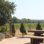 Photo de Gracianna Winery
