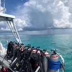 Beautiful dive boats with amazing dive sites.