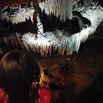 Tuckaleechee Caverns의 사진