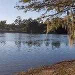 Lake Ella & Fred Drake Park resmi