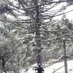 صورة فوتوغرافية لـ Snow Valley